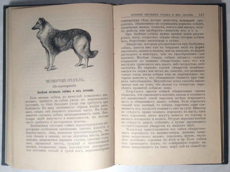 Освальд Ф. Лягавая собака.